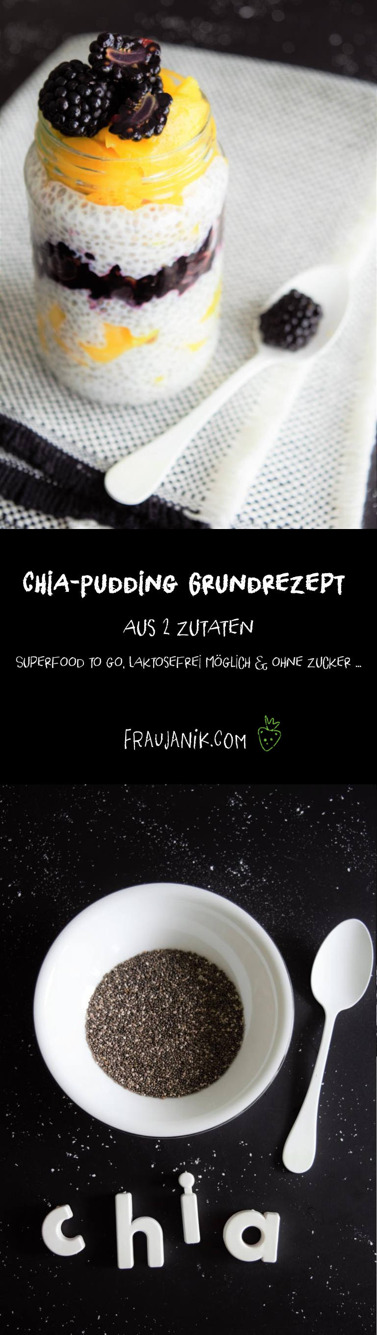 Chia-Pudding Grundrezept, vegan